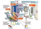 Nhà máy xử lý rác phát điện